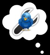 Como seleccionar seguidores en Twitter